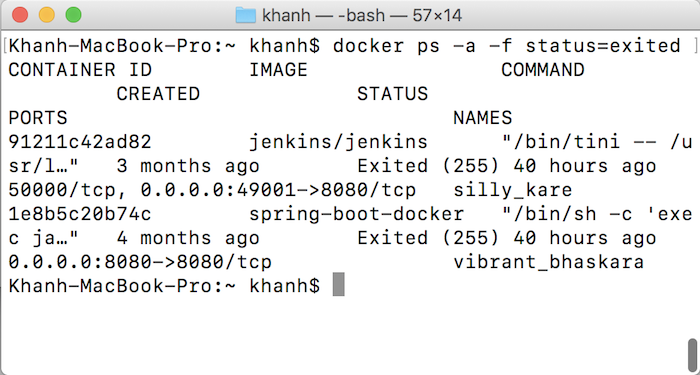 Remove Container in Docker