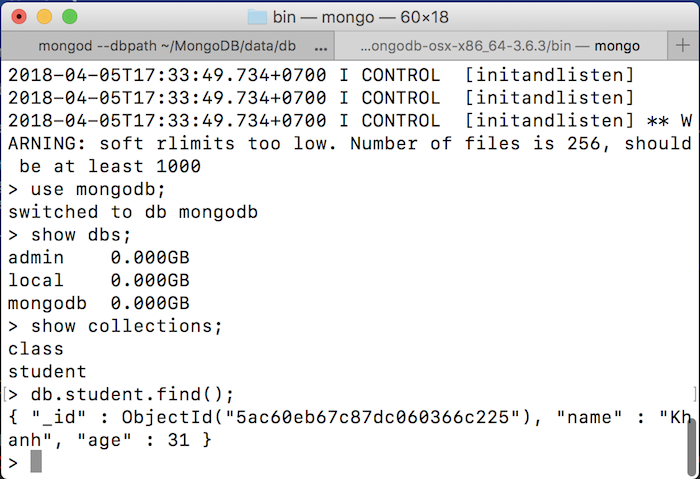Manipulate with MongoDB in Java application